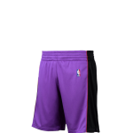 Mitchell & Ness NBA Swingman Shorts Raptors