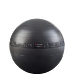 Pure Gym Ball 65cm
