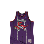 Mitchell & Ness NBA Raptors Tracy McGrady#1 Swingman Jersey