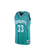 Mitchell & Ness NBA Alonzo Mourning#33 Swingman Jersey