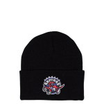 Mitchell & Ness NBA Toronto Raptors Team Logo Beanie